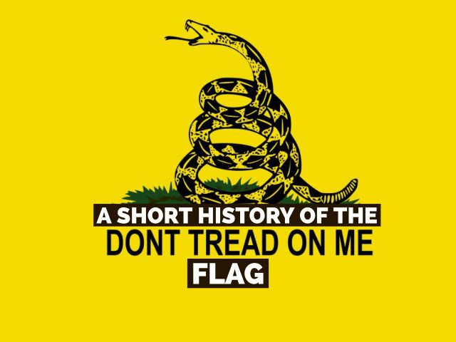 A Short History of the Don't Tread on Me Flag